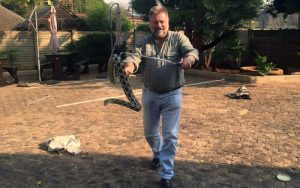 Snake removal and relocation