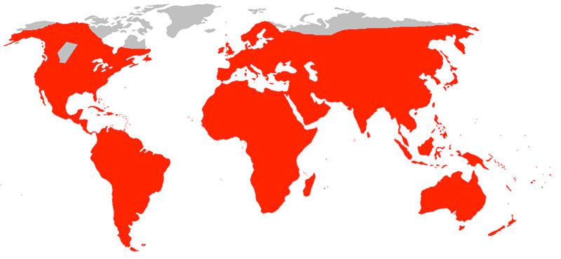 Distribution map of the Brown Rat