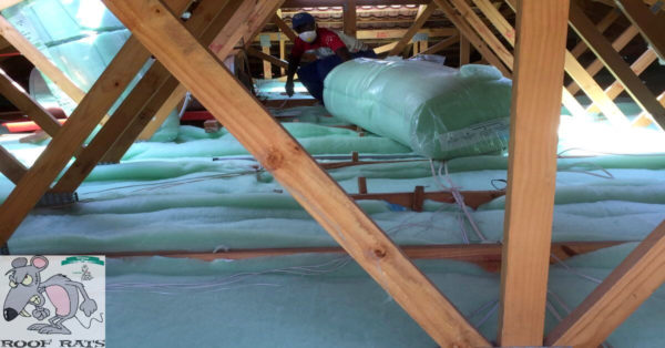installing pitched roof insulation